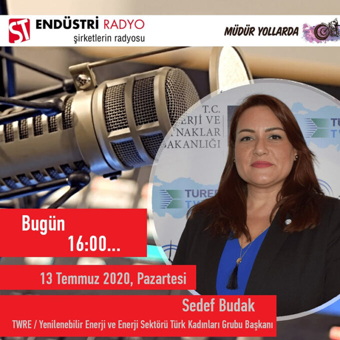 TWRE / Yenilenebilir Enerji Ve Enerji Sektörü Türk Kadınları Grubu Başkanı Sedef Budak: Yenilenebilir Enerji Sektörü