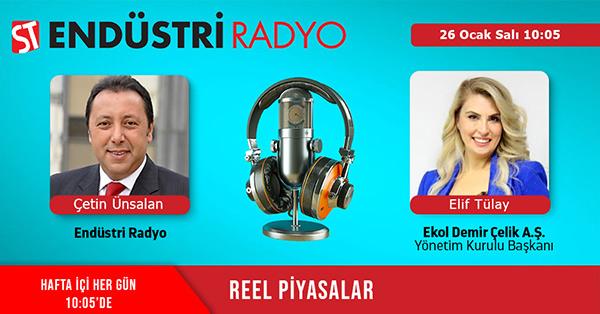 Ekol Demir Çelik A.Ş. Yönetim Kurulu Başkanı Elif Tülay: Demir çelik Sektörü