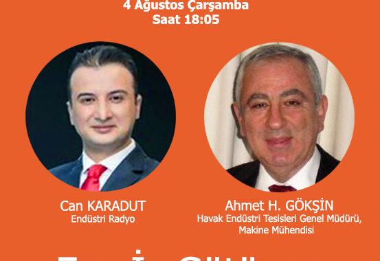 Ahmet Gökşin