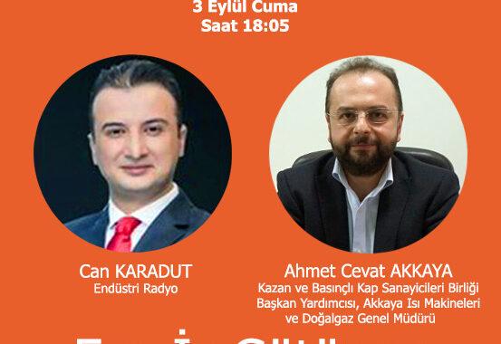 Ahmet Cevat Akkaya